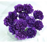 20 Fresh-Cut Purple Moonshade Carnations (Purple Flowers)
