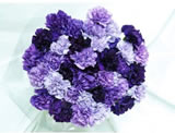 140 Fresh-cut Mixed Purple Carnations (Purple Flowers)