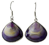 Silver Clam Shell Purple Shell Earrings