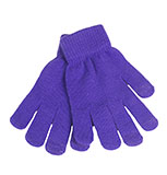 Touch Screen Purple Gloves
