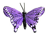 Purple Butterfly Decoration