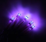 Battery Operated Purple LED Lights