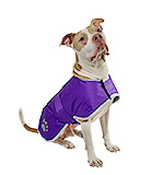 Reversible Purple Blanket Coat for Dogs