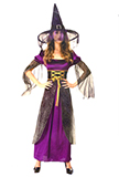 Adult Long Purple Witch Costume