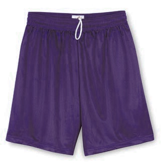 Men's Mesh Purple Shorts