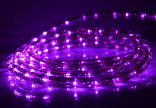12 Purple Rope Lights