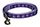 Paw Print Purple Dog Leash