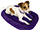 Purple Dog Bed / Cat Bed