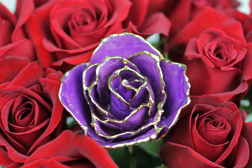 Rose Ad